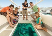 Shark Bay Glass Bottom Boat Photo From SeaWorld Website